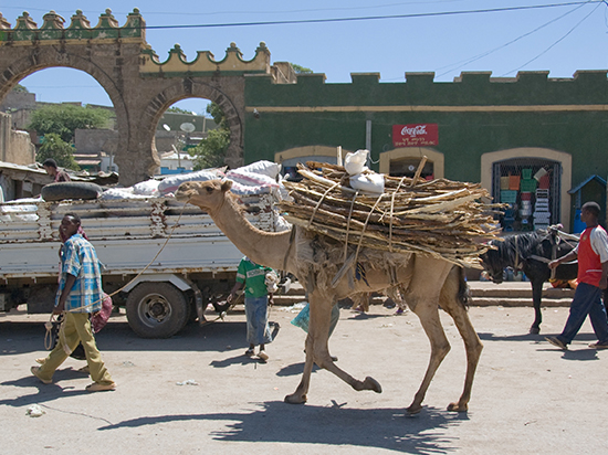 FKEE 202 HARAR, DIRE DAWA AND AWASH NP BY SURFACE DURATION 4 NIGHTS/ 5 DAYS